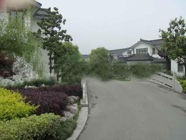 点击图片放大 泽景园